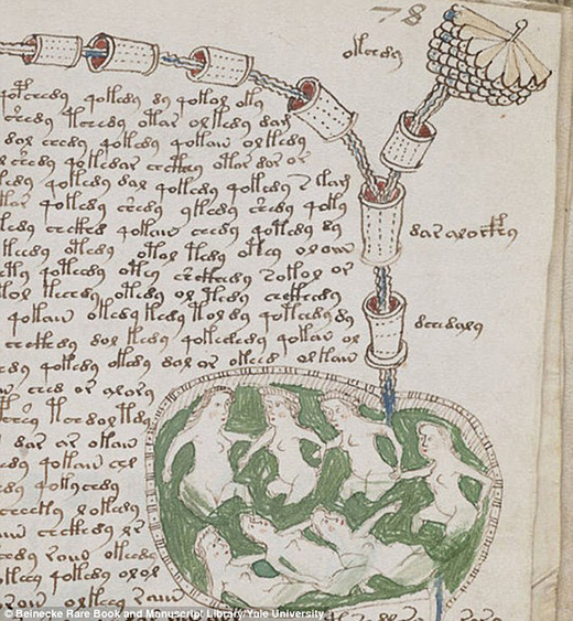 blog-manuscrit-de-voynich-2-éditions-fractales- par-david-tellier