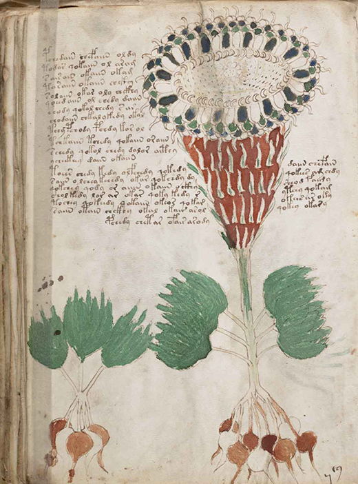 blog-manuscrit-de-voynich-3-éditions-fractales- par-david-tellier