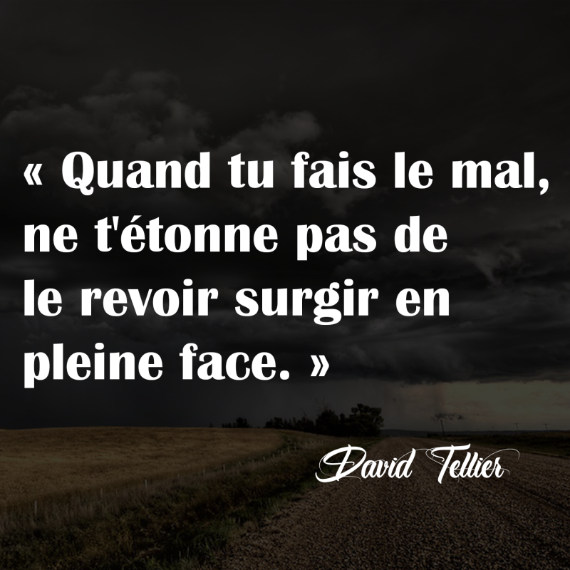 citation-david-tellier-editions-fractales-1
